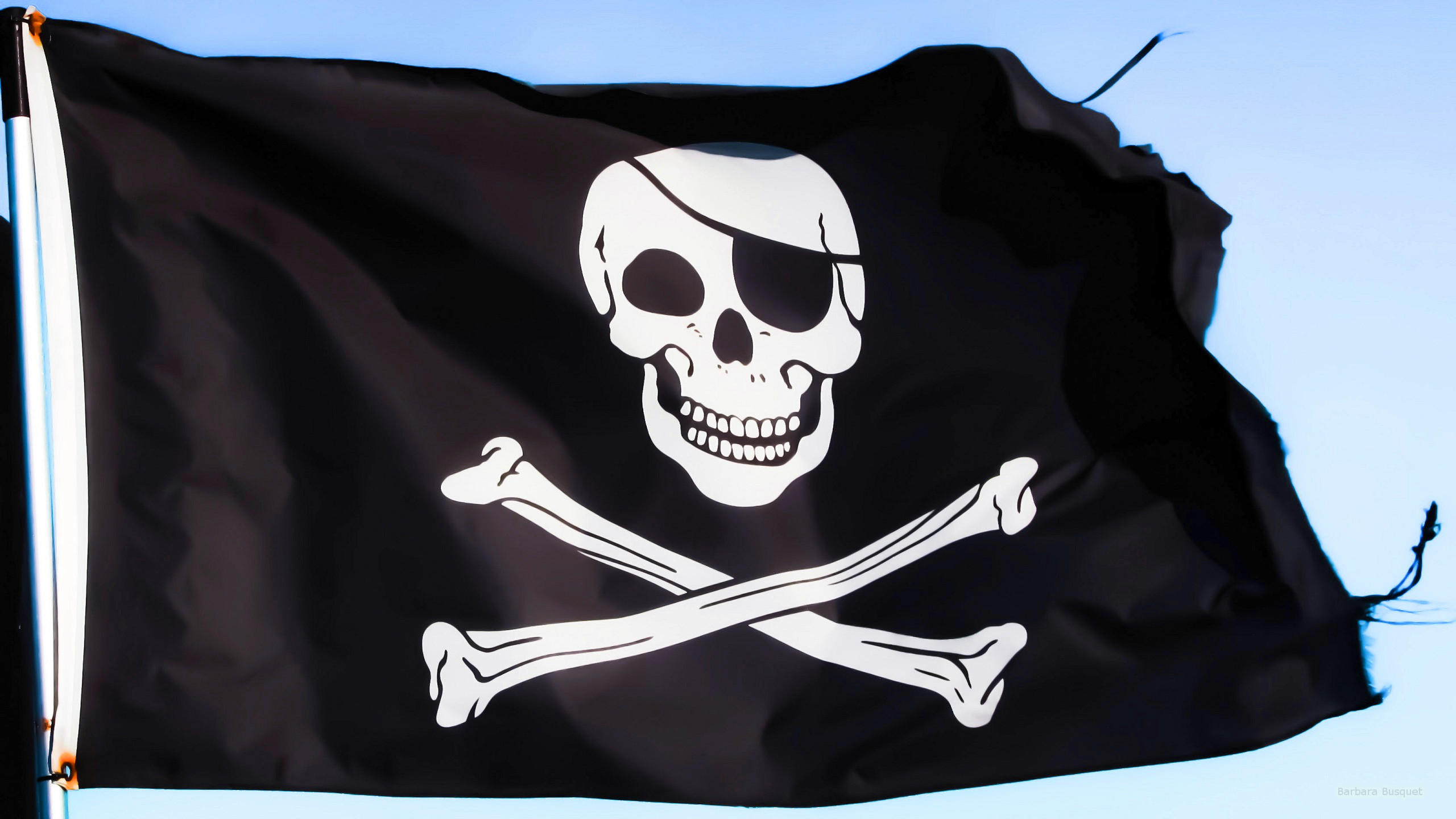 Pirate-flag_large